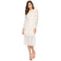 Bridges Lace Long Sleeve Dress